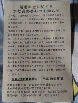 DSC_2374_crop_648x857.JPG